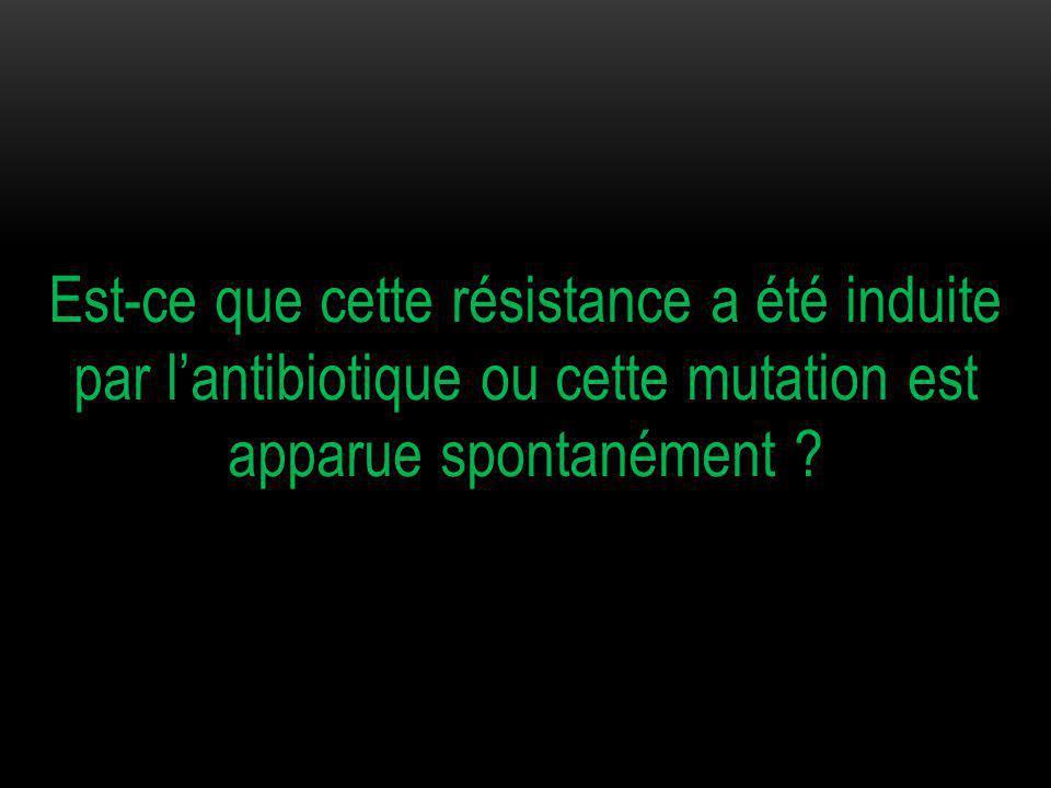 Est-ce que cette résistance a été induite par l'antibiotique ou cette mutation est apparue spontanément