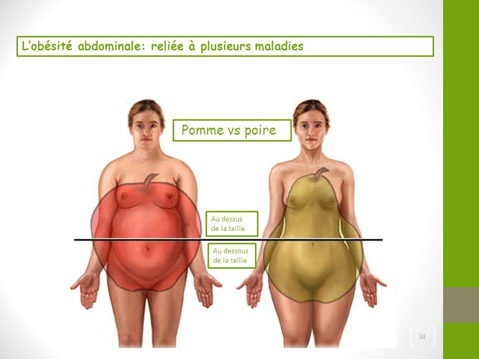 Pomme vs poire L'obésité abdominale: reliée à plusieurs maladies
