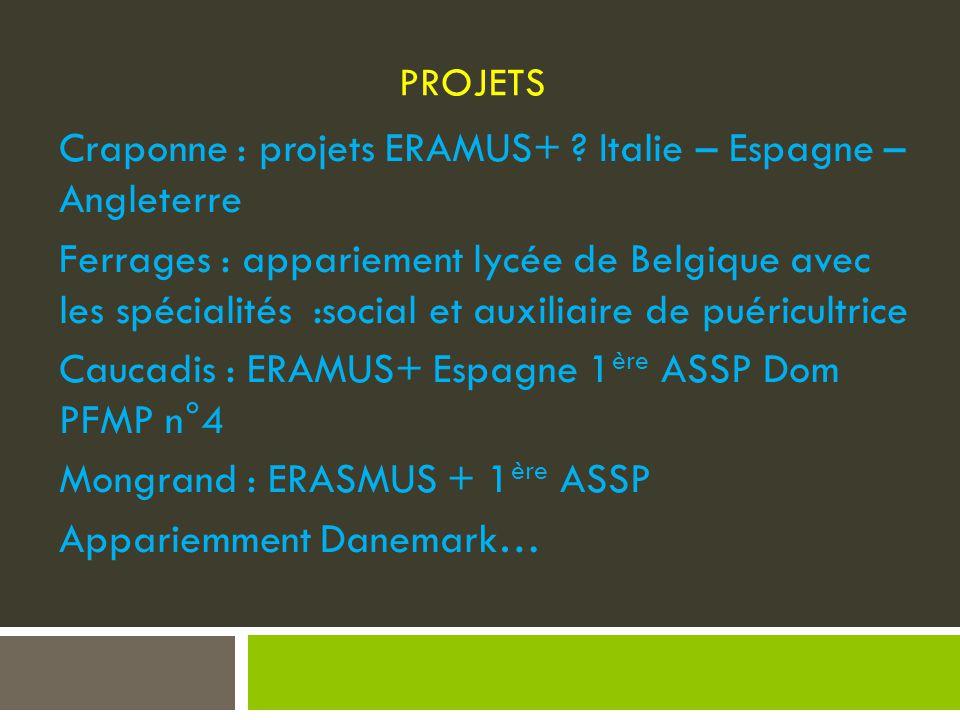 Craponne : projets ERAMUS+ Italie – Espagne – Angleterre