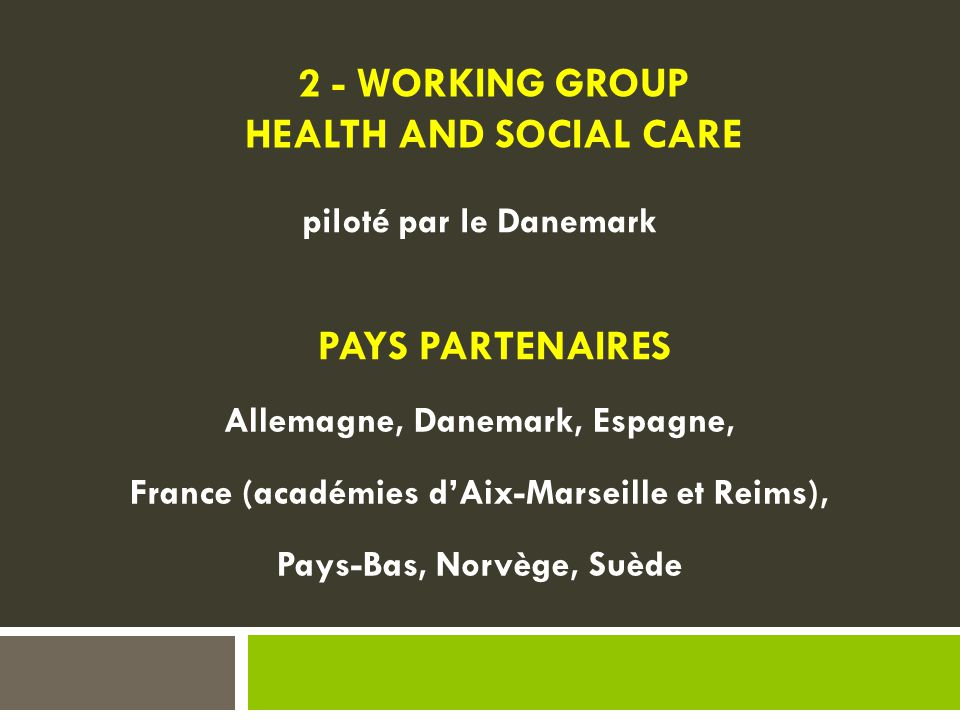 2 - WORKING GROUP HEALTH AND SOCIAL CARE PAYS PARTENAIRES