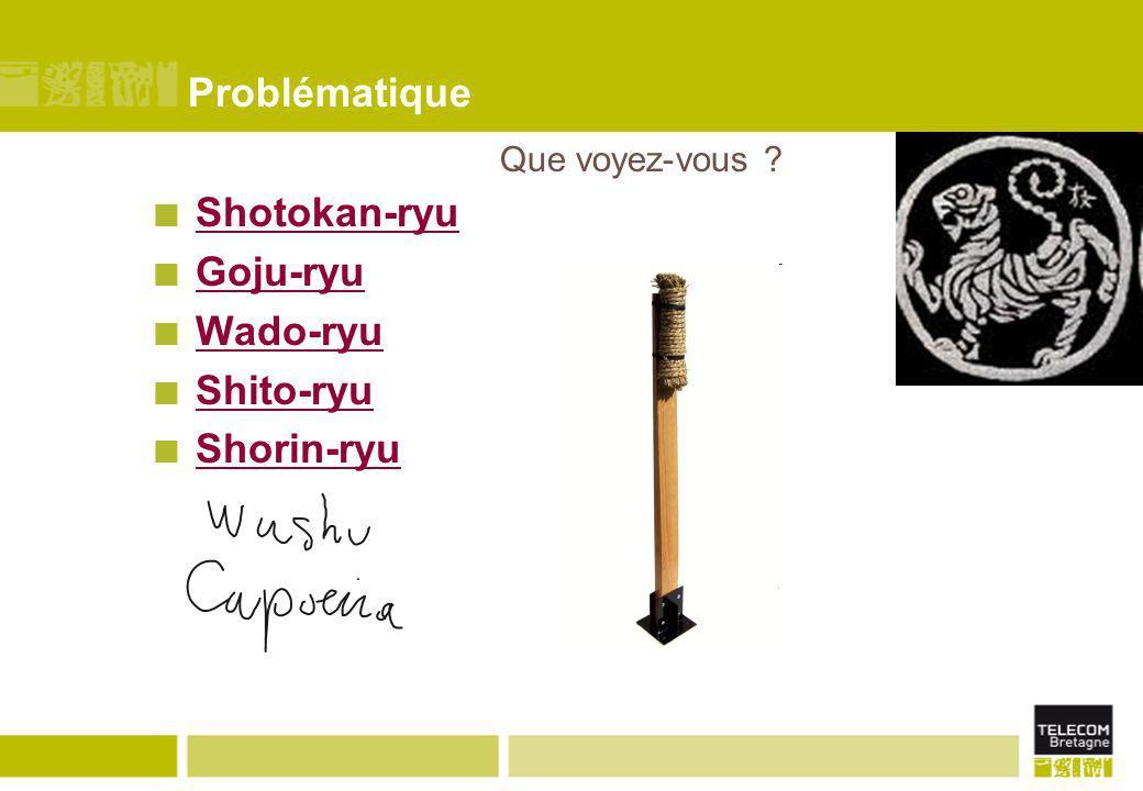 Problématique Shotokan-ryu Goju-ryu Wado-ryu Shito-ryu Shorin-ryu