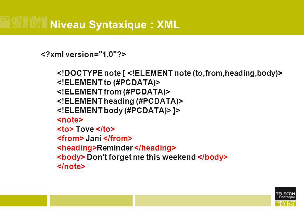 Niveau Syntaxique : XML