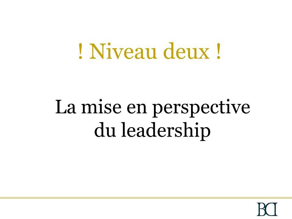 La mise en perspective du leadership