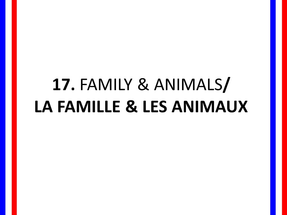 LA FAMILLE & LES ANIMAUX