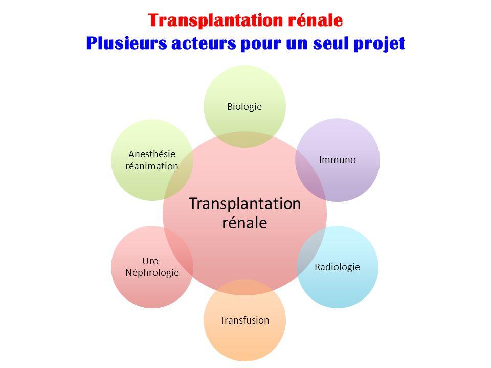 Transplantation rénale Plusieurs acteurs pour un seul projet