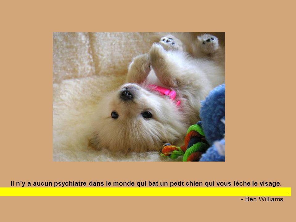 Il n'y a aucun psychiatre dans le monde qui bat un petit chien qui vous lèche le visage.