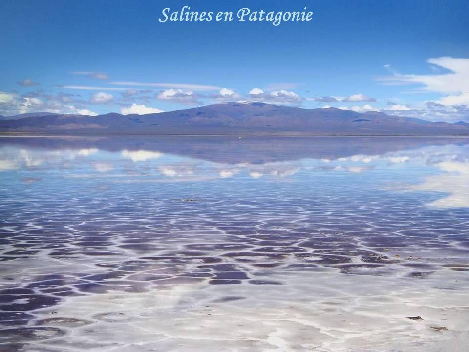 Salines en Patagonie