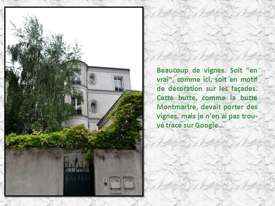 Beaucoup de vignes. Soit en vrai , comme ici, soit en motif de décoration sur les façades.