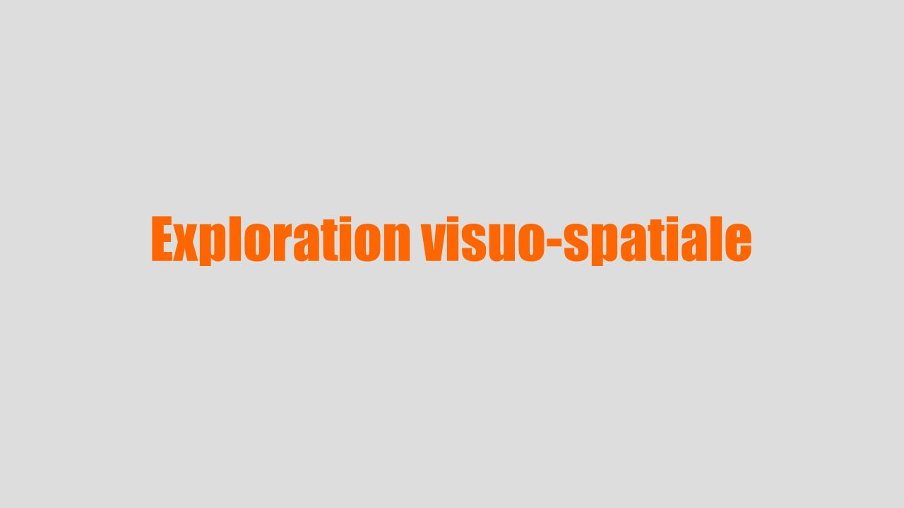 Exploration visuo-spatiale