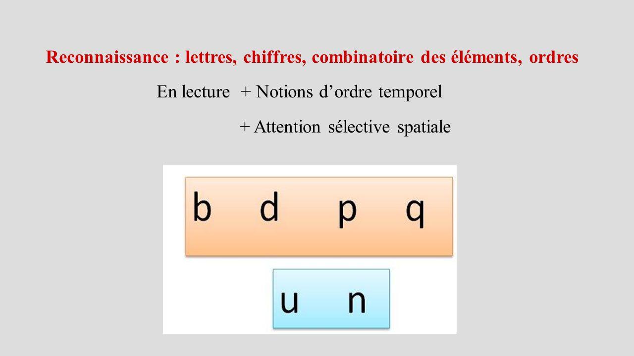 Reconnaissance : lettres, chiffres, combinatoire des éléments, ordres