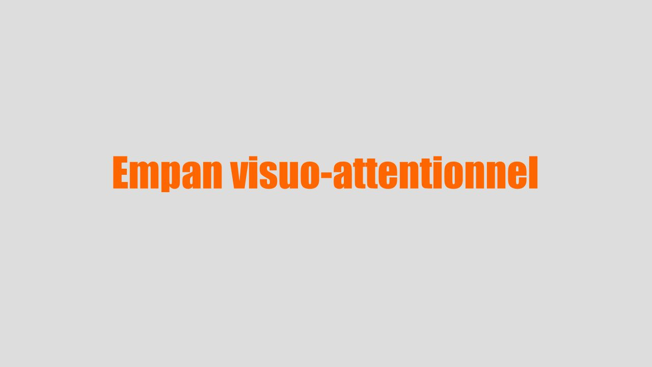 Empan visuo-attentionnel