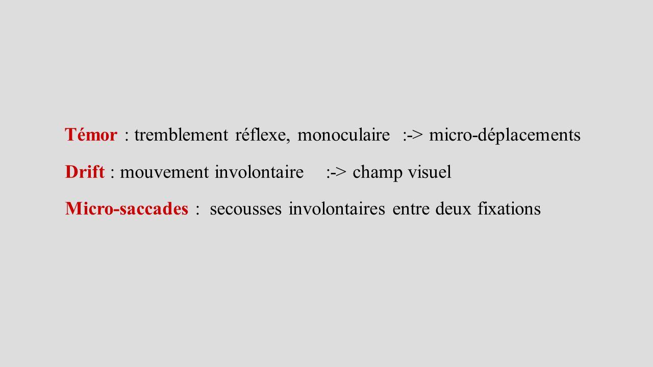 Témor : tremblement réflexe, monoculaire :-> micro-déplacements