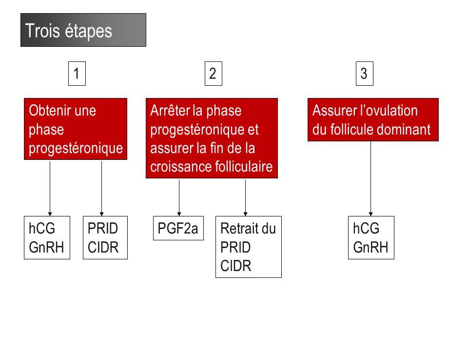 Trois étapes 1 2 3 Obtenir une phase progestéronique Arrêter la phase