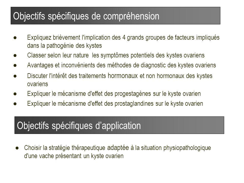 Objectifs spécifiques de compréhension
