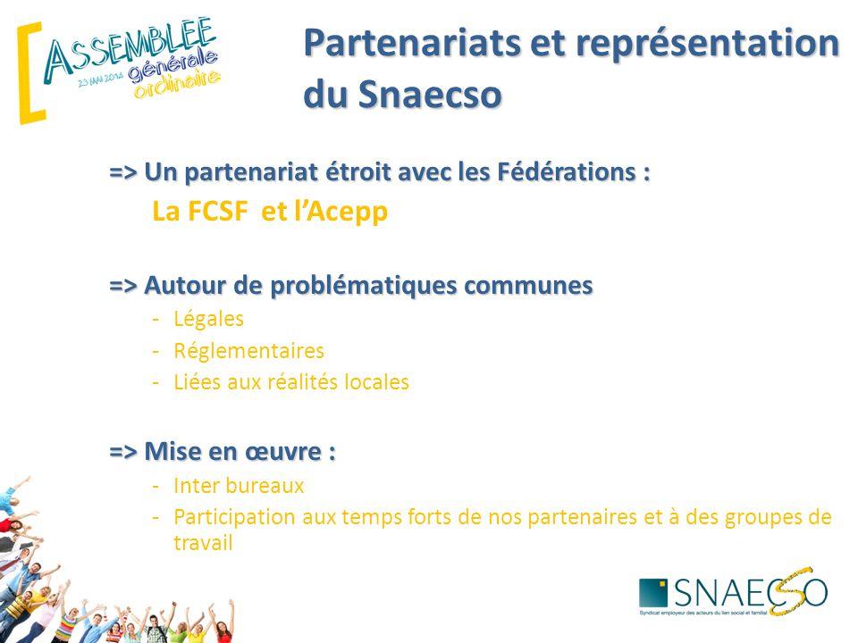 Partenariats et représentation du Snaecso