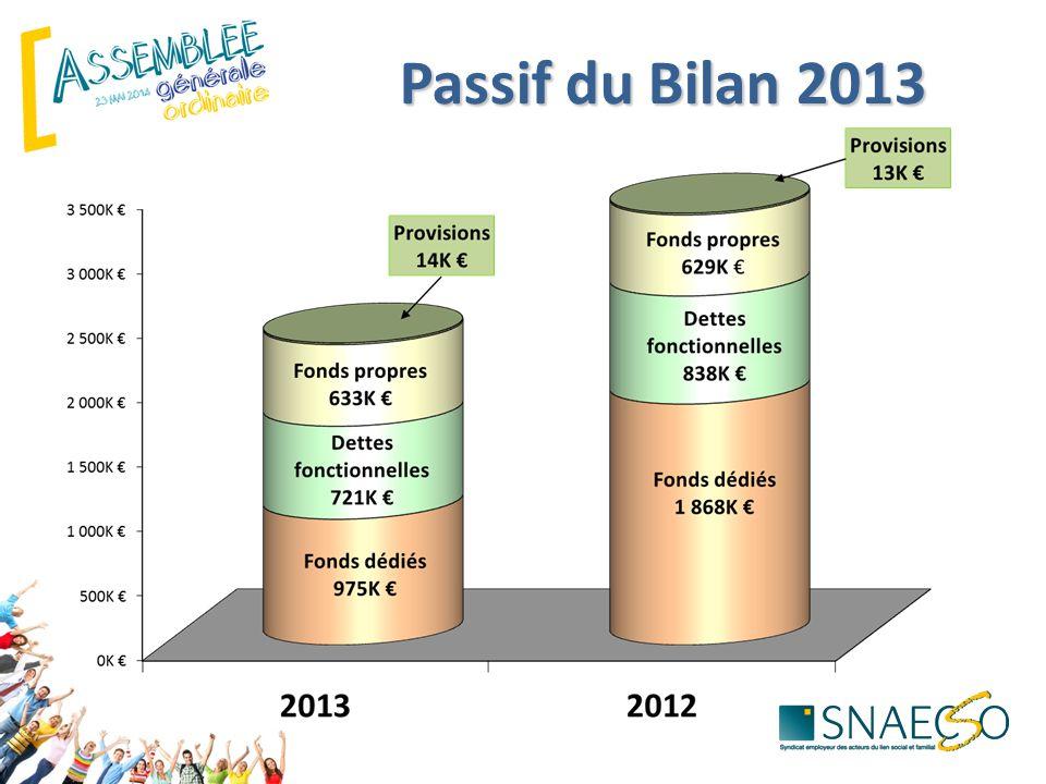 Passif du Bilan 2013