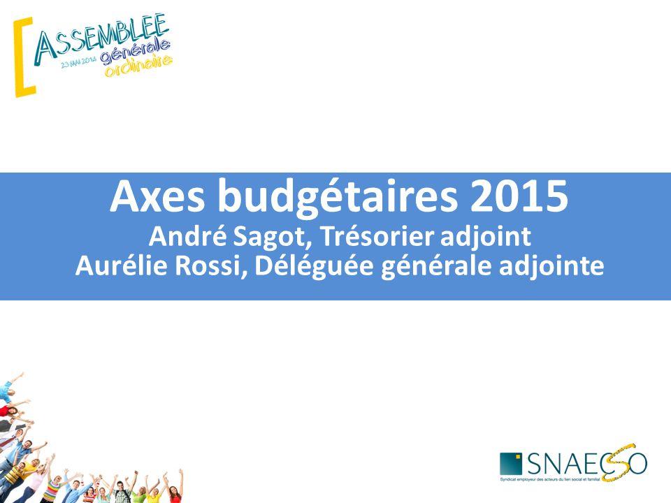 Axes budgétaires 2015 André Sagot, Trésorier adjoint Aurélie Rossi, Déléguée générale adjointe