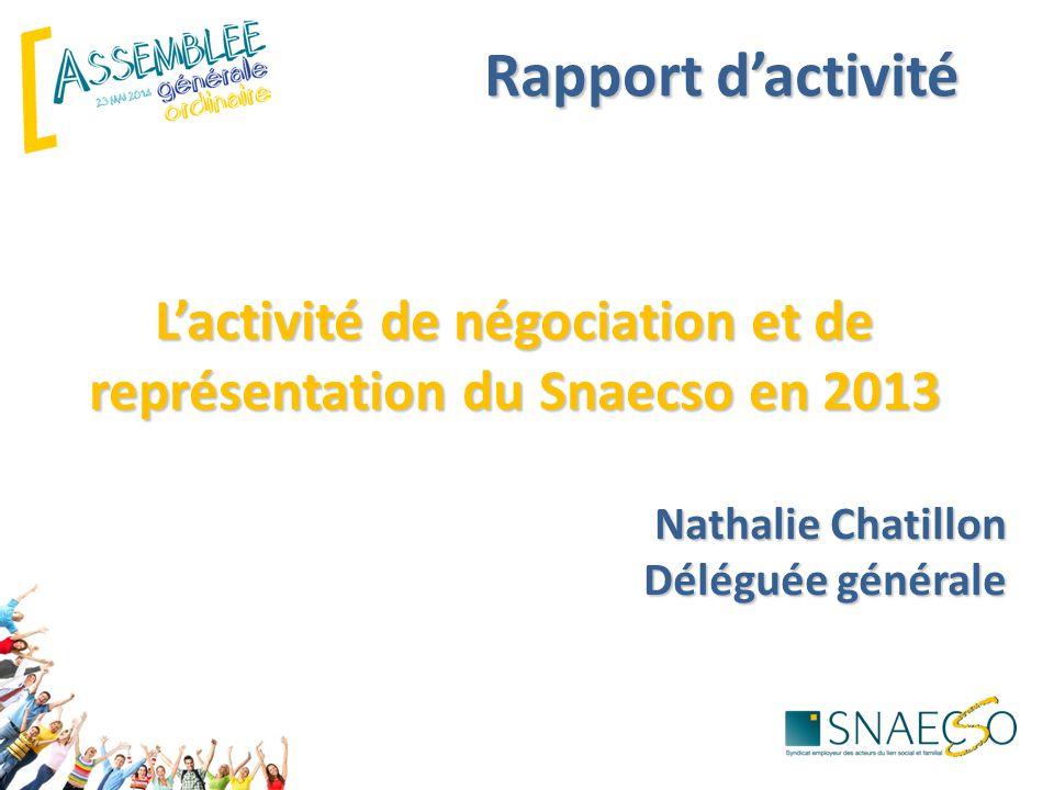 L'activité de négociation et de représentation du Snaecso en 2013
