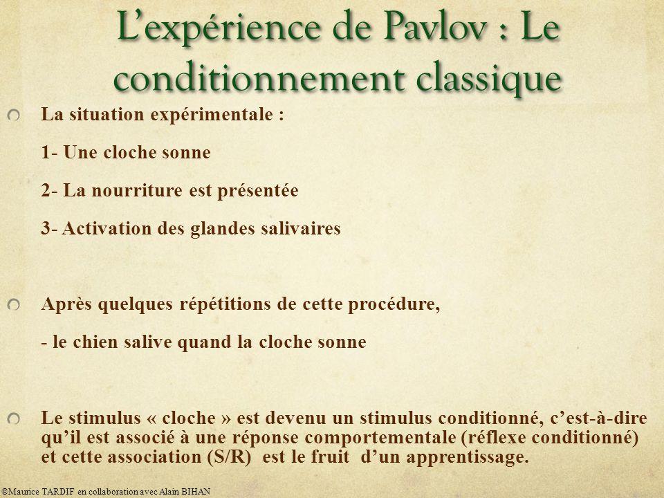 L'expérience de Pavlov : Le conditionnement classique