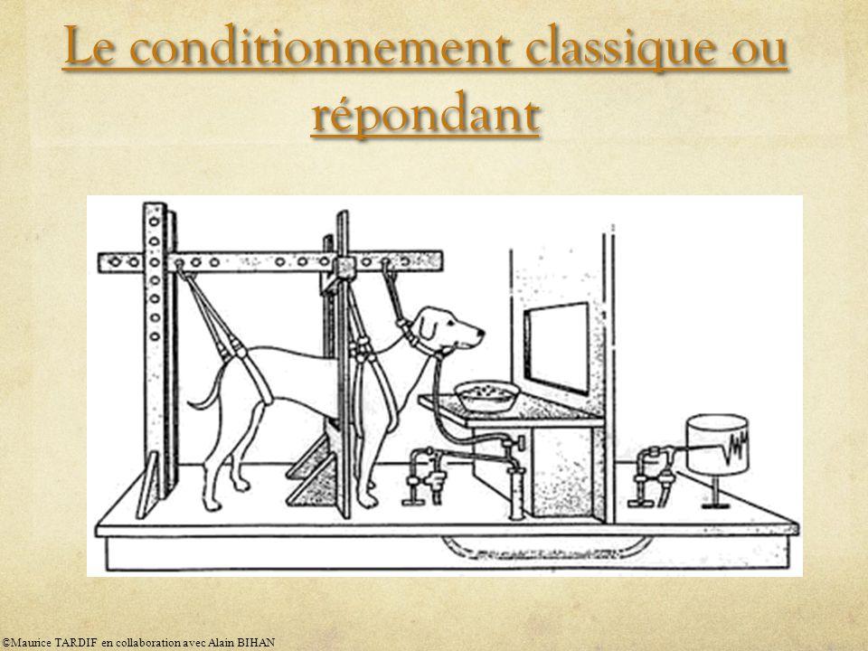 Le conditionnement classique ou répondant