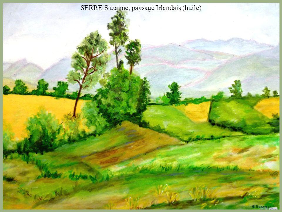 SERRE Suzanne, paysage Irlandais (huile)