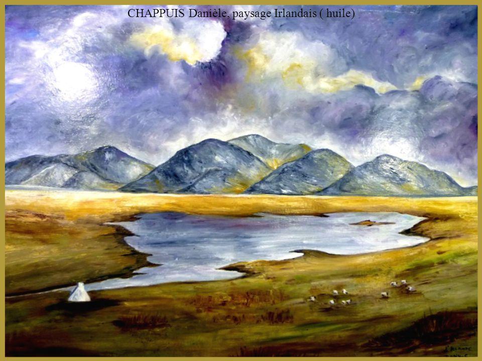 CHAPPUIS Danièle, paysage Irlandais ( huile)