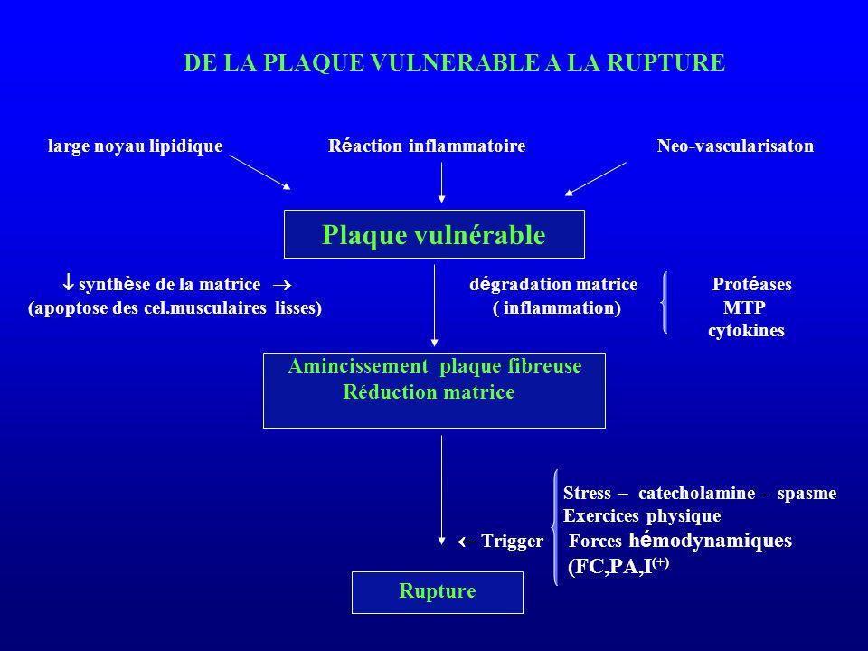 Plaque vulnérable DE LA PLAQUE VULNERABLE A LA RUPTURE (FC,PA,I(+)