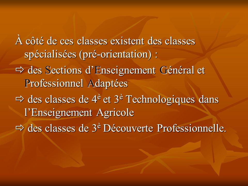 À côté de ces classes existent des classes spécialisées (pré-orientation) :