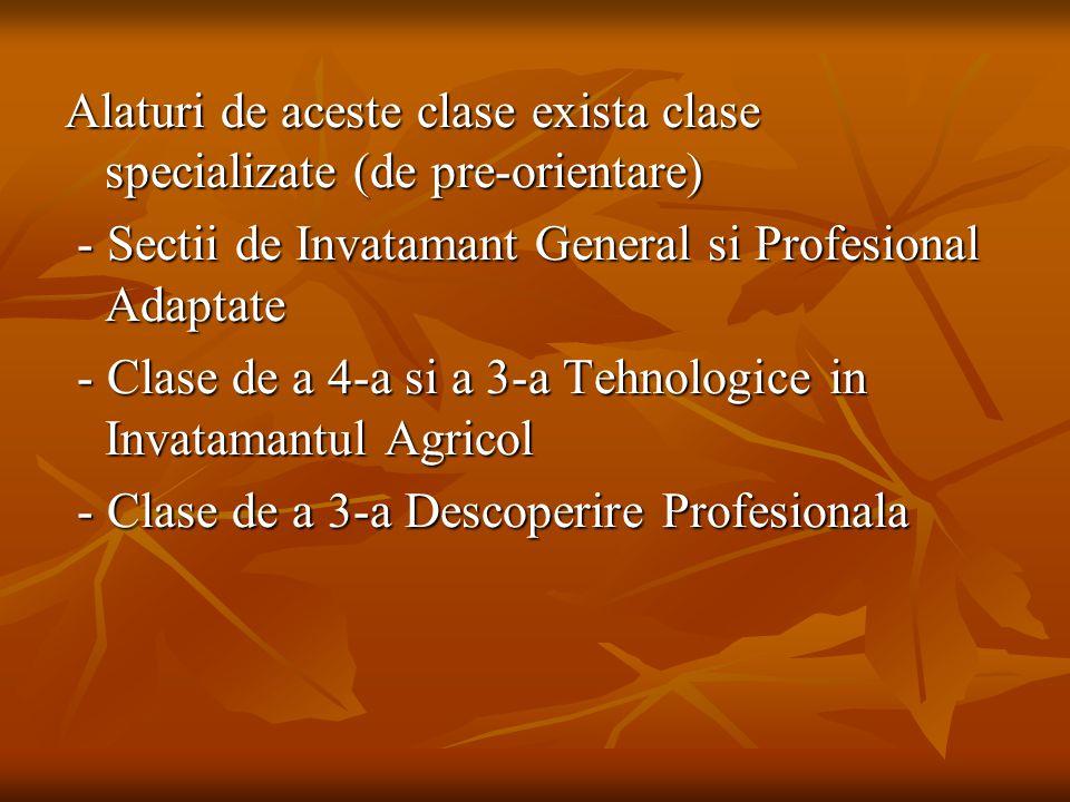 Alaturi de aceste clase exista clase specializate (de pre-orientare)