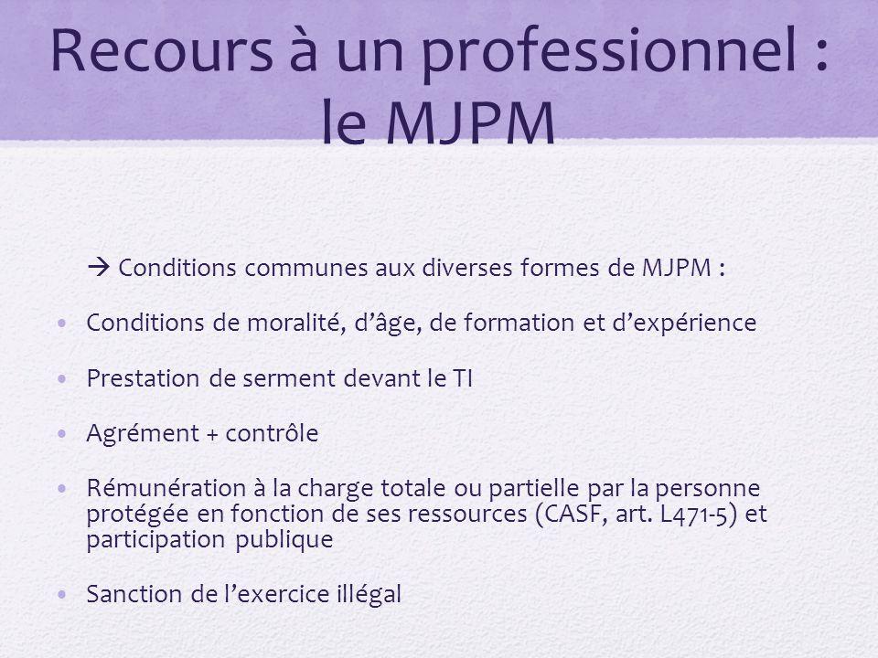 Recours à un professionnel : le MJPM