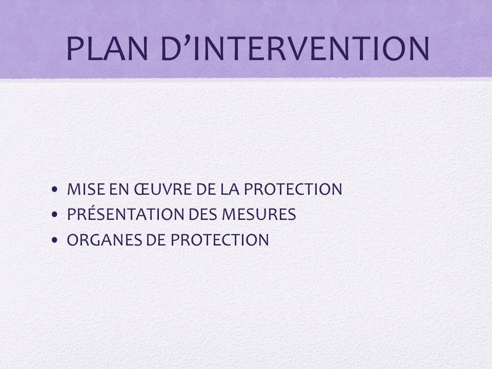 PLAN D'INTERVENTION MISE EN ŒUVRE DE LA PROTECTION