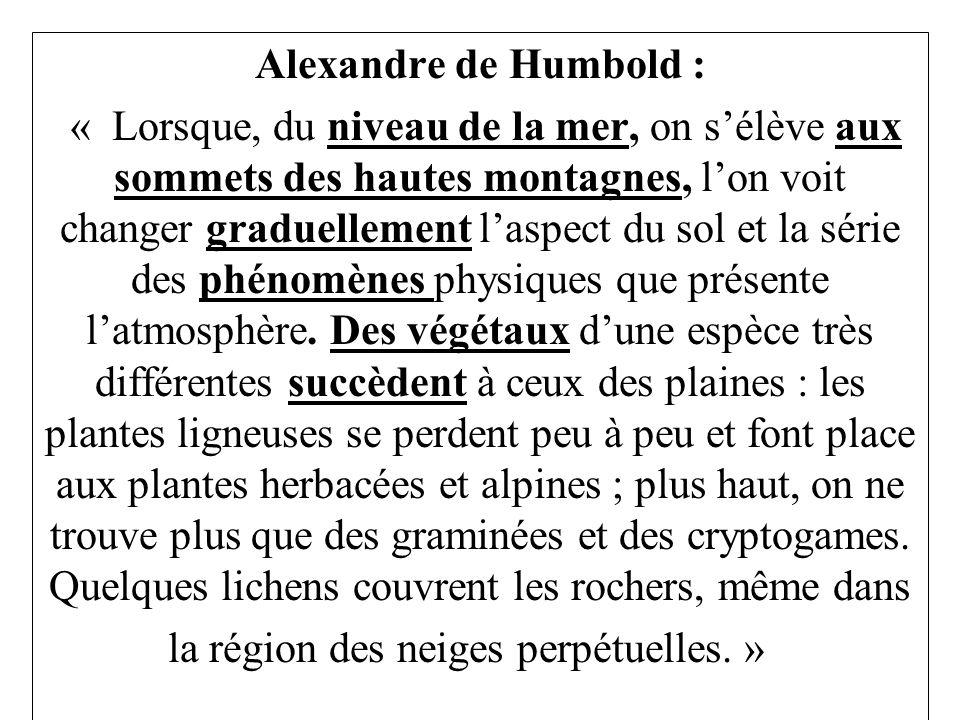 Alexandre de Humbold :