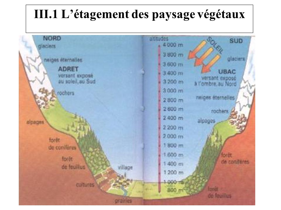 III.1 L'étagement des paysage végétaux
