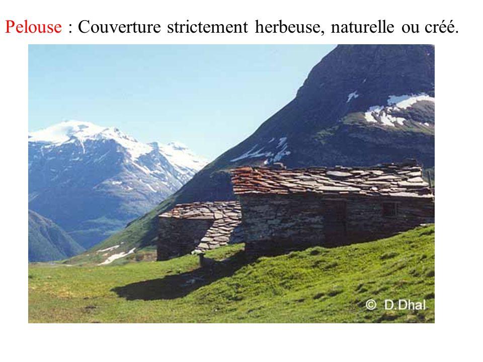 Pelouse : Couverture strictement herbeuse, naturelle ou créé.