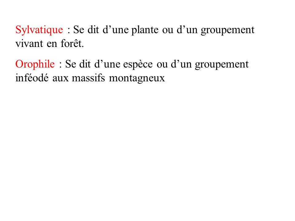 Sylvatique : Se dit d'une plante ou d'un groupement vivant en forêt.
