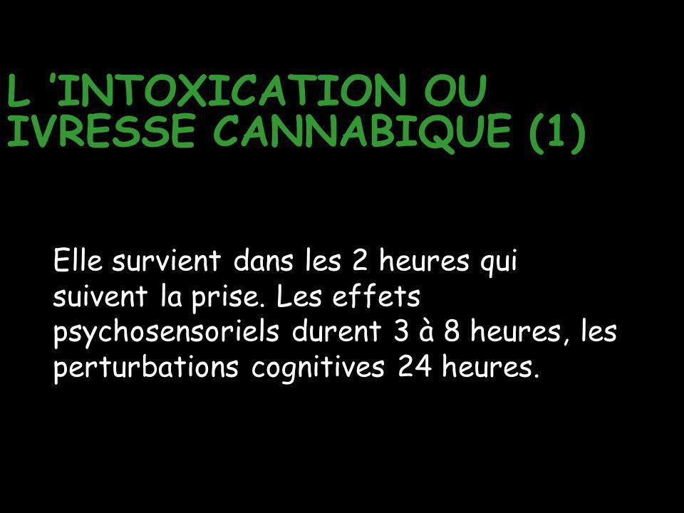 L 'INTOXICATION OU IVRESSE CANNABIQUE (1)