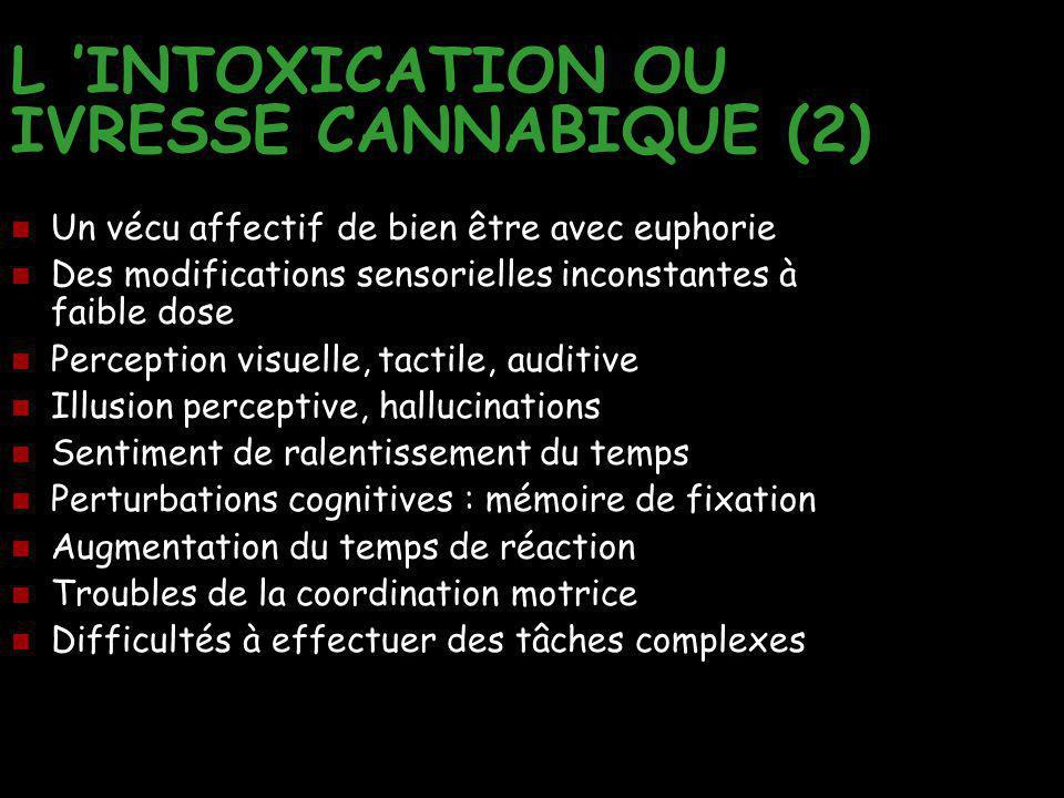 L 'INTOXICATION OU IVRESSE CANNABIQUE (2)