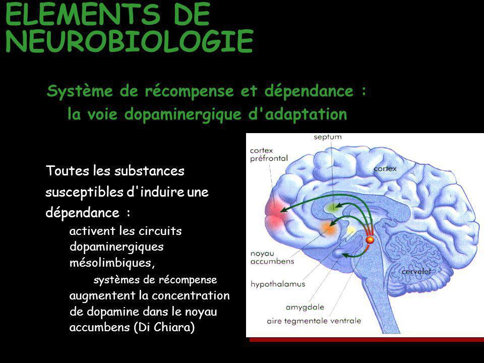 ELEMENTS DE NEUROBIOLOGIE