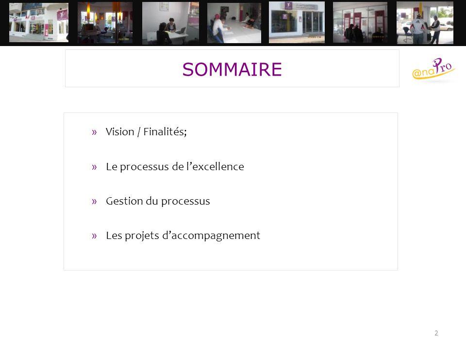 SOMMAIRE Vision / Finalités; Le processus de l'excellence
