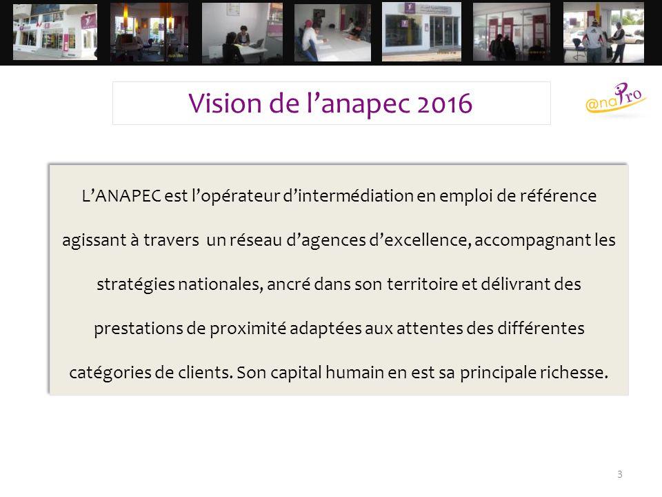 Vision de l'anapec 2016