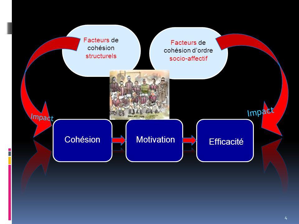Facteurs de cohésion d'ordre socio-affectif