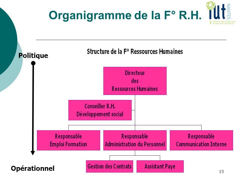 Organigramme de la F° R.H.