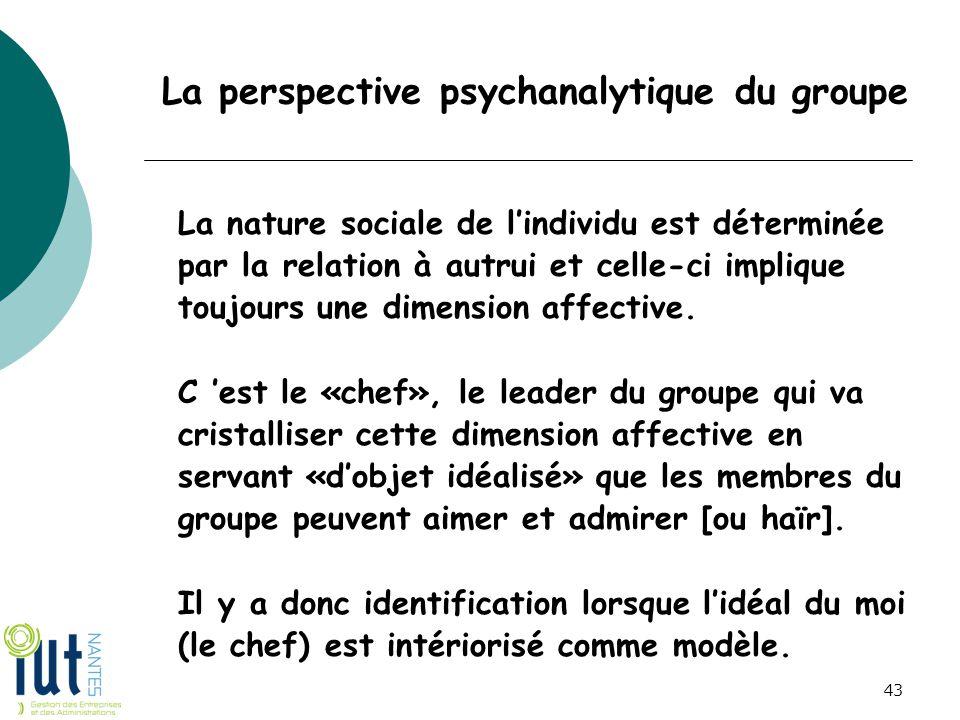 La perspective psychanalytique du groupe