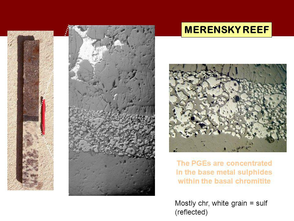 MERENSKY REEF The PGEs are concentrated in the base metal sulphides within the basal chromitite. Mostly chr, white grain = sulf.