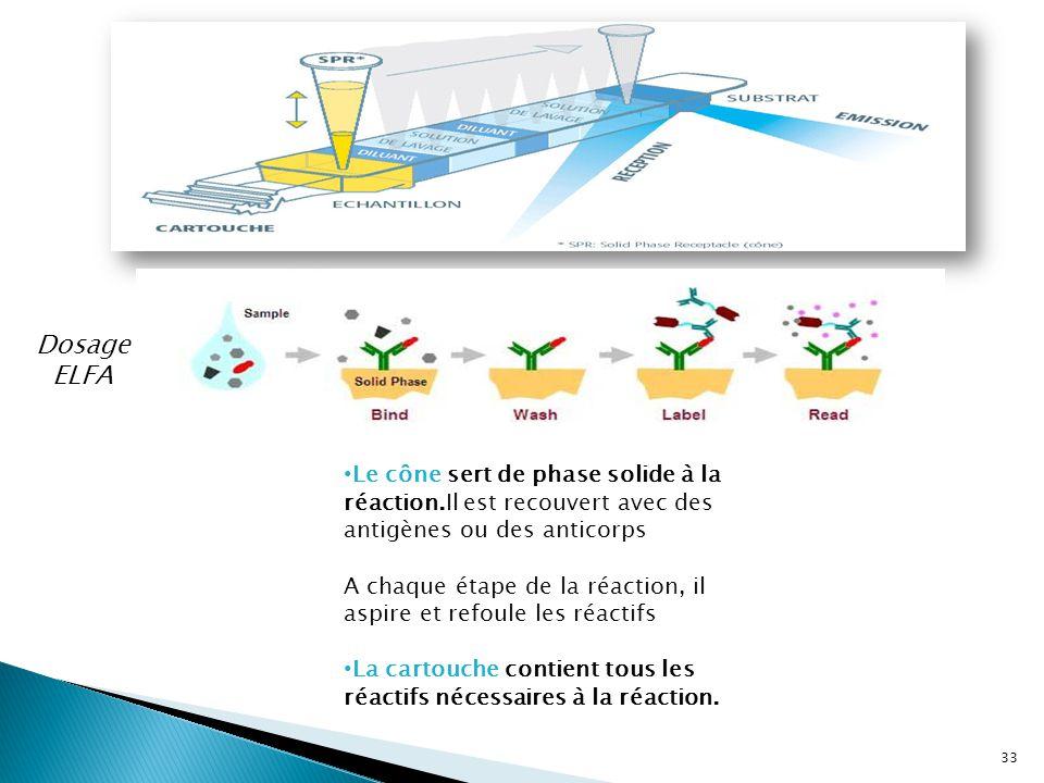Dosage ELFA Le cône sert de phase solide à la réaction.Il est recouvert avec des antigènes ou des anticorps.