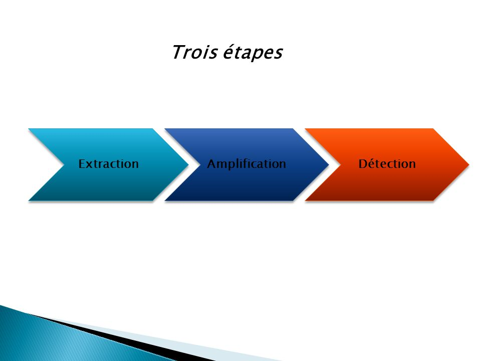 Trois étapes Extraction Amplification Détection