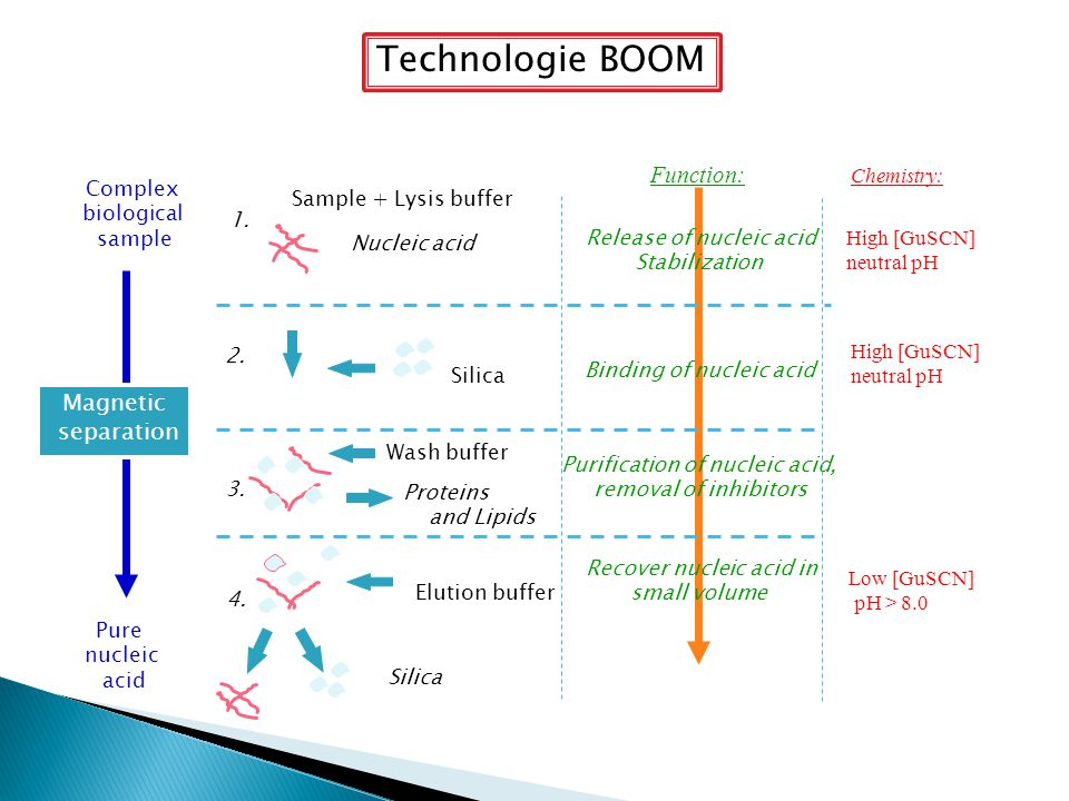Technologie BOOM Function: Magnetic separation Chemistry: