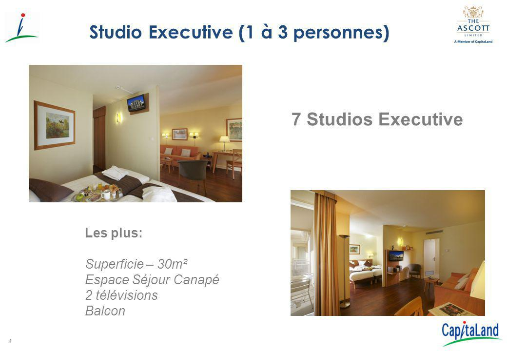 Studio Executive (1 à 3 personnes)