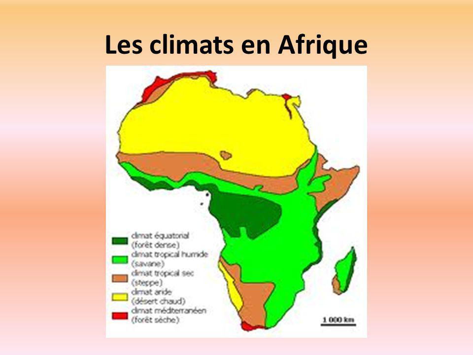 Les climats en Afrique