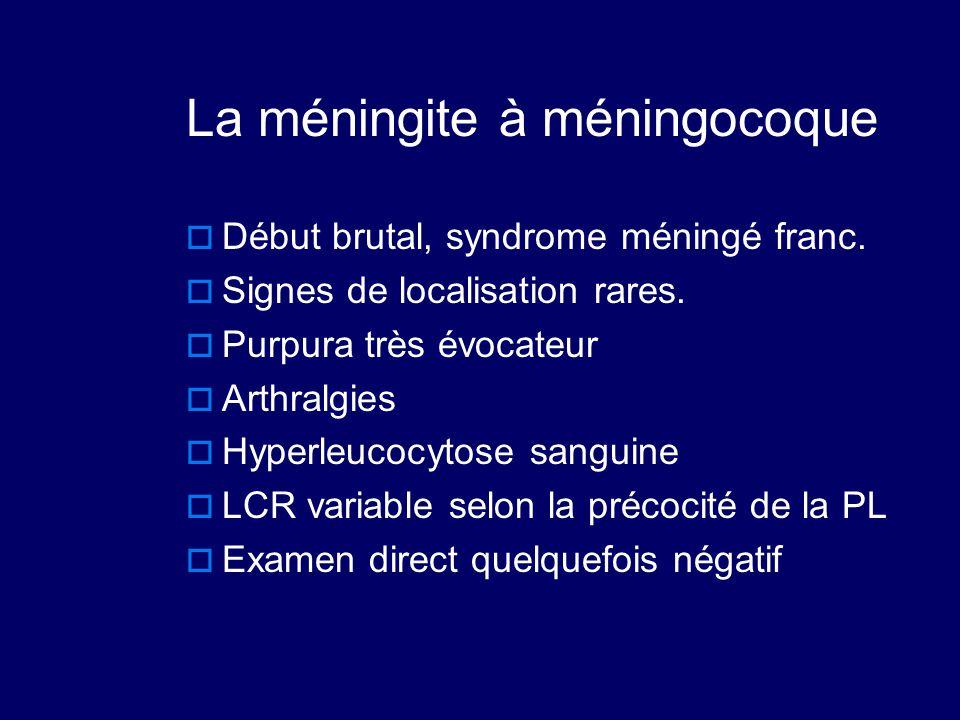 La méningite à méningocoque